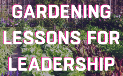 YouTube 9 Gardening Lessons for Leadership